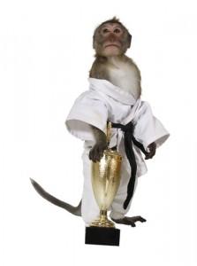 martial arts business success
