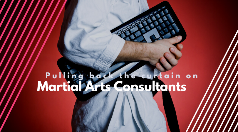 martial arts business consultants