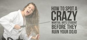 how to spot a crazy martial arts student
