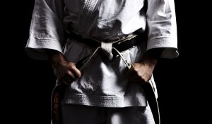 Martial Arts Business Daily header image
